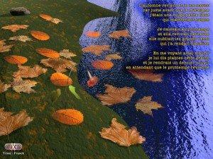 Automne dans AUTOMNE automne-300x225